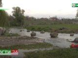 Рейд по выявлению нарушений водоохранной зоны прошел в Назрани.